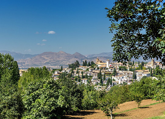 region_el_palmar_stadt